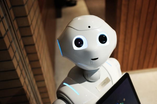 Should Robots Be Like People, Animals or Machines?