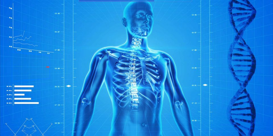 future human illustrated with 3d scan of human body